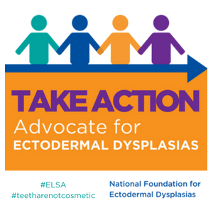 Disability Advocates Sharply Critical >> Ways To Advocate National Foundation For Ectodermal Dysplasias